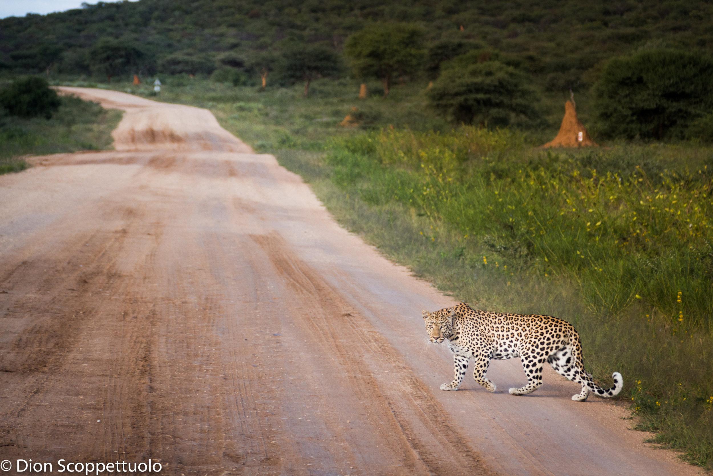 Namibia-107.jpg