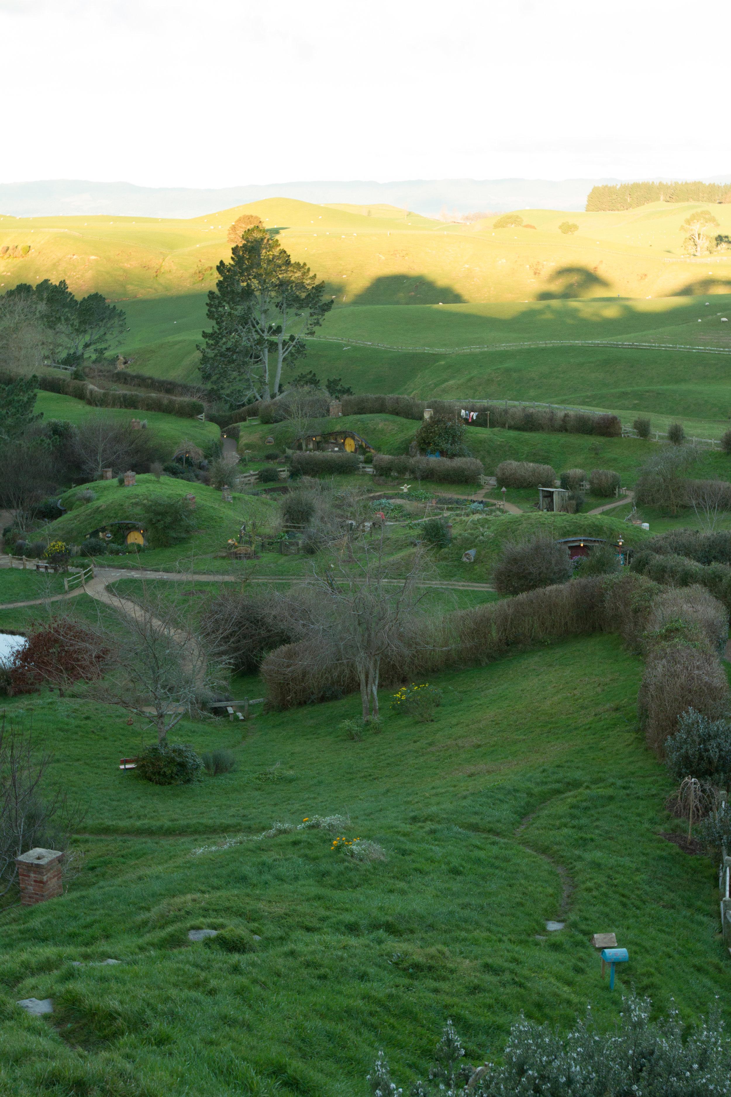 NZ-36.jpg