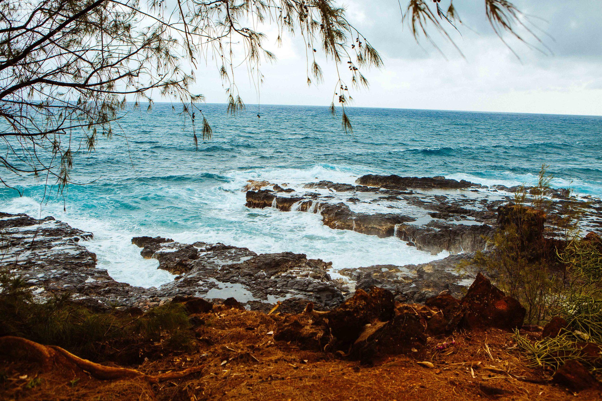 Kauai_day1_ (290 of 310)-2.jpg