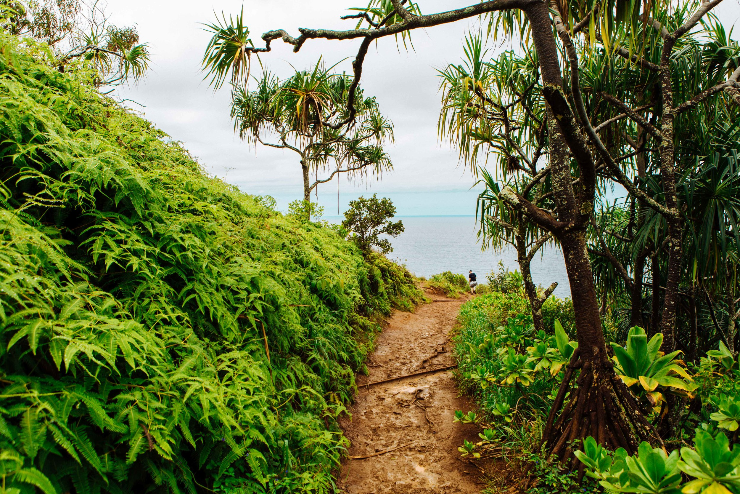 Kauai_day2_-105-2.jpg