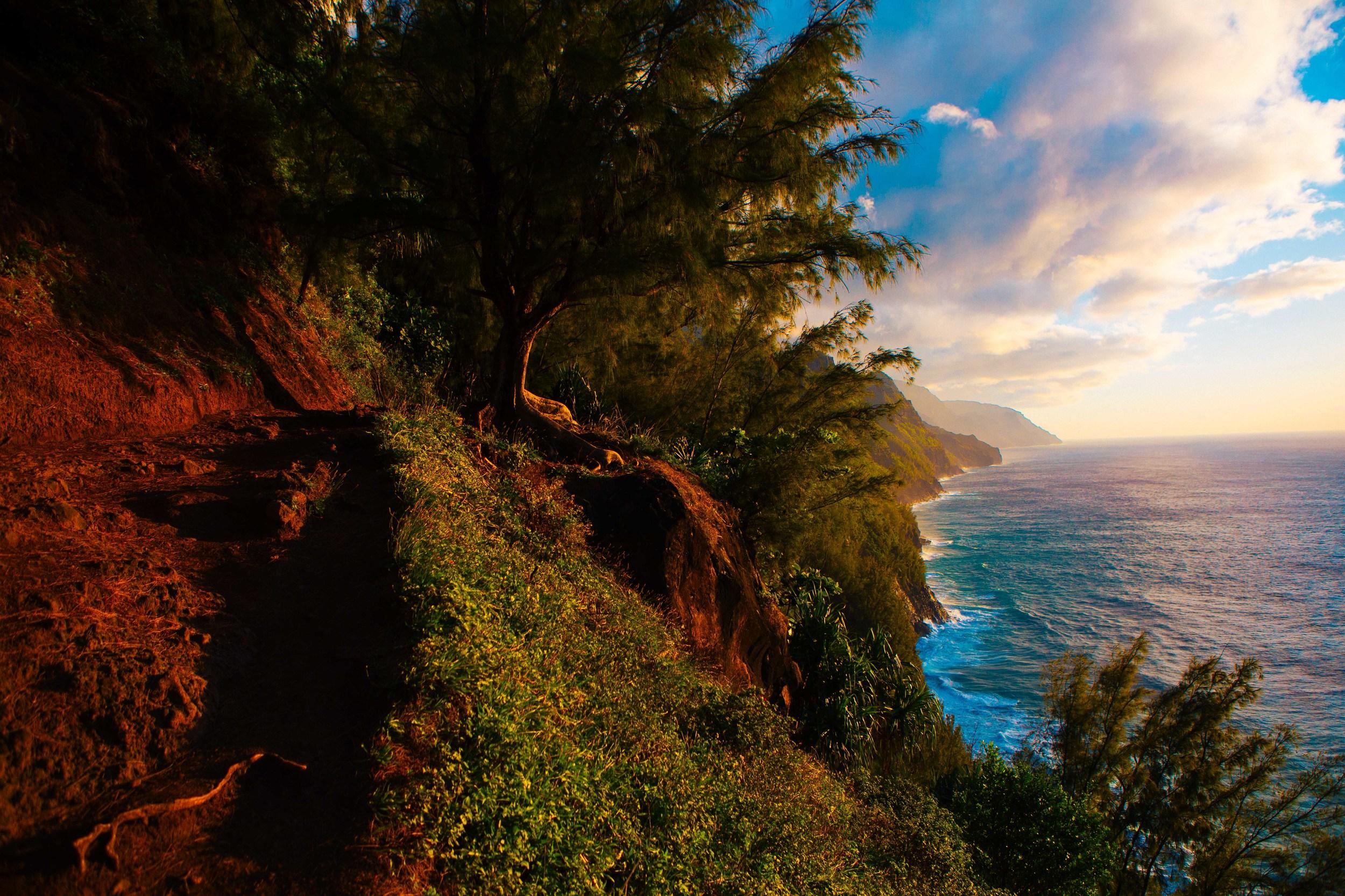 Kauai_day2_-442-2.jpg