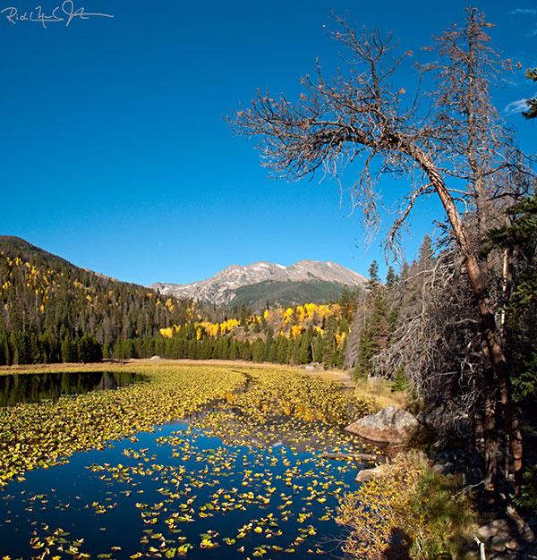 Cub Lake.