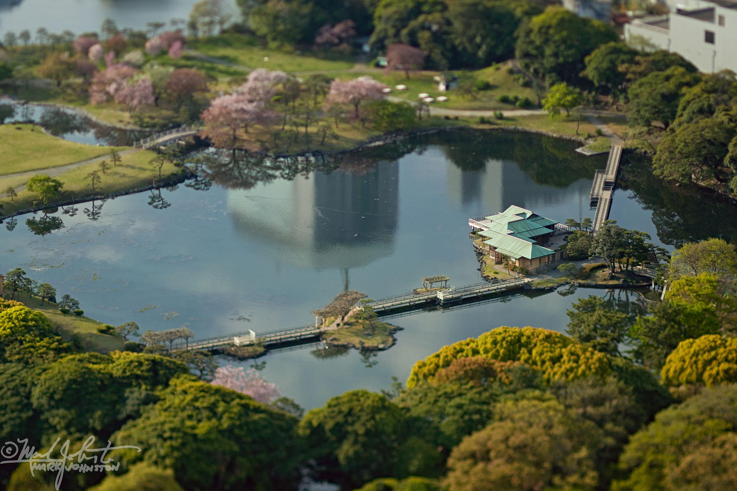 Hama Rikyuen garden, Tokyo.