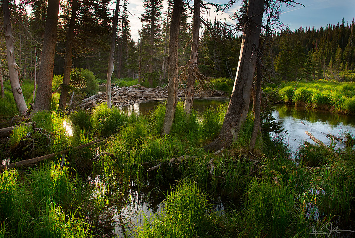 At the foot of Long Lake as it drains towards Brainard Lake.