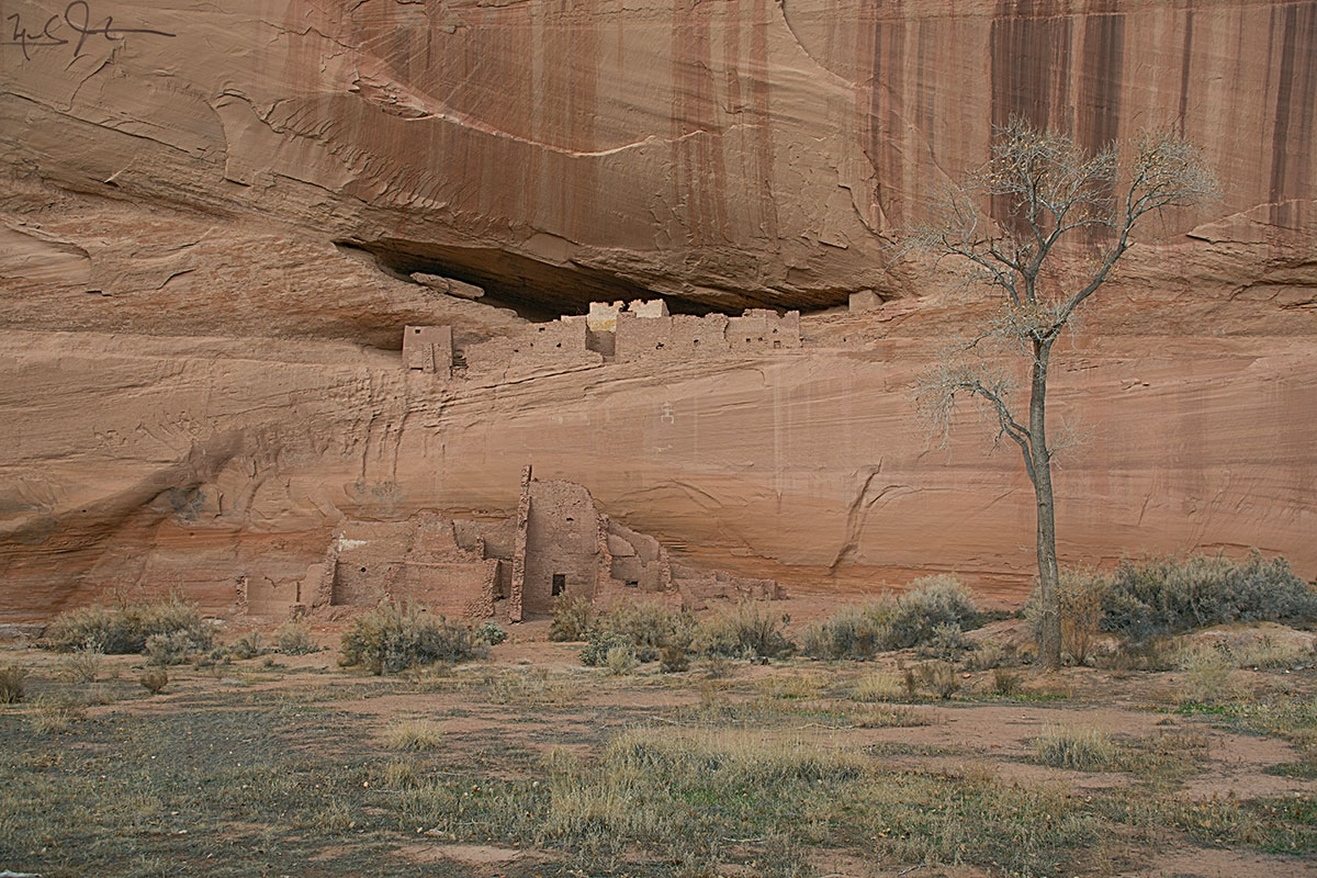 """White House"" ruins, Canyon de Chelly National Monument, Arizona."