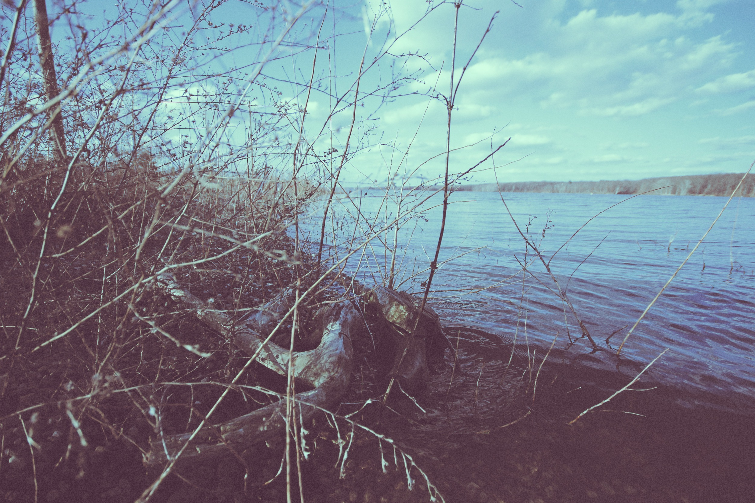 water 2.jpg