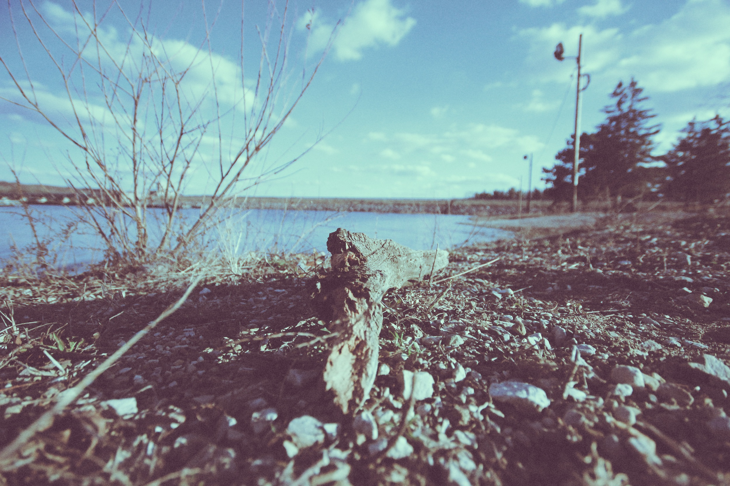 water 4.jpg