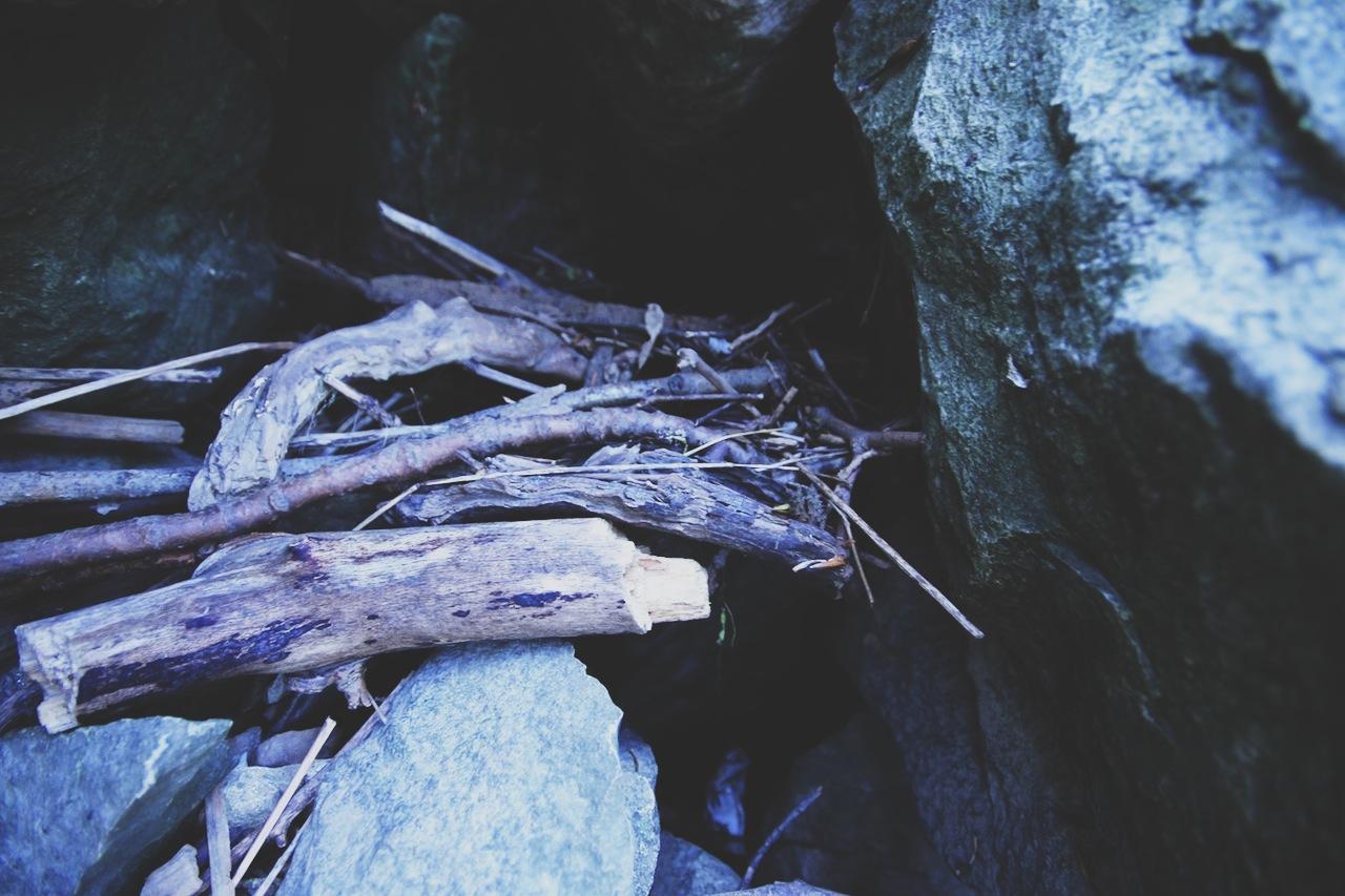 photo 5.JPG