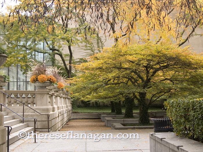 art institute courtyard autumn sm.jpg