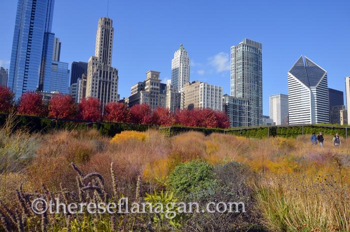 autumn in Chicago.jpg