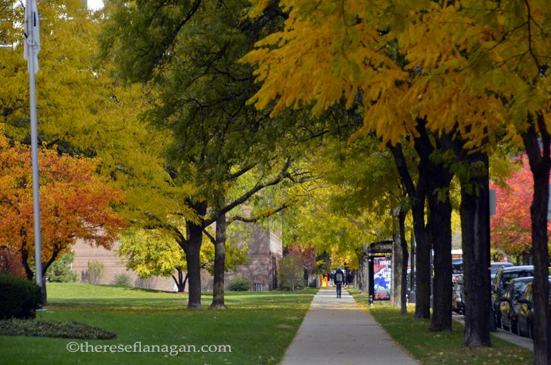 City Sidewalks - Autumn in Chicago 2013 (2)
