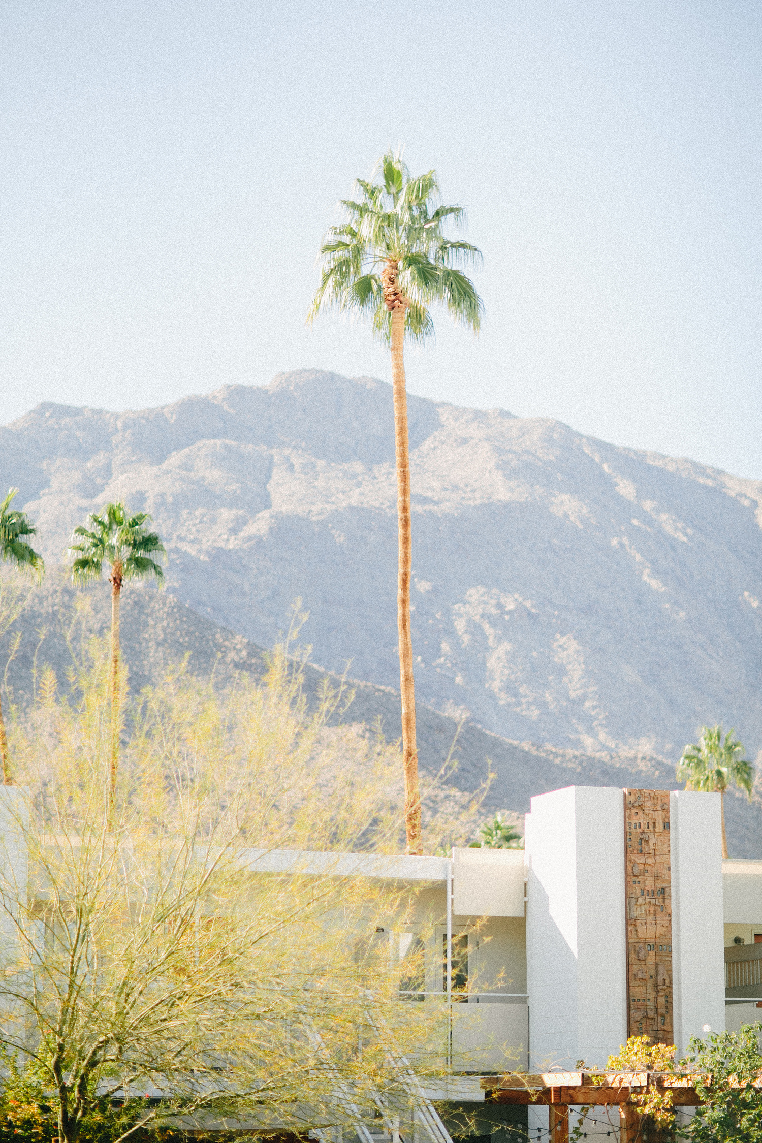 palm-springs-ace-hotel-wedding-ryan-flynn-0029.JPG