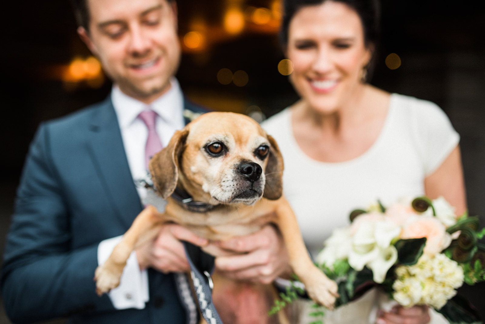 091-the-four-seasons-seattle-wedding-with-dog.jpg