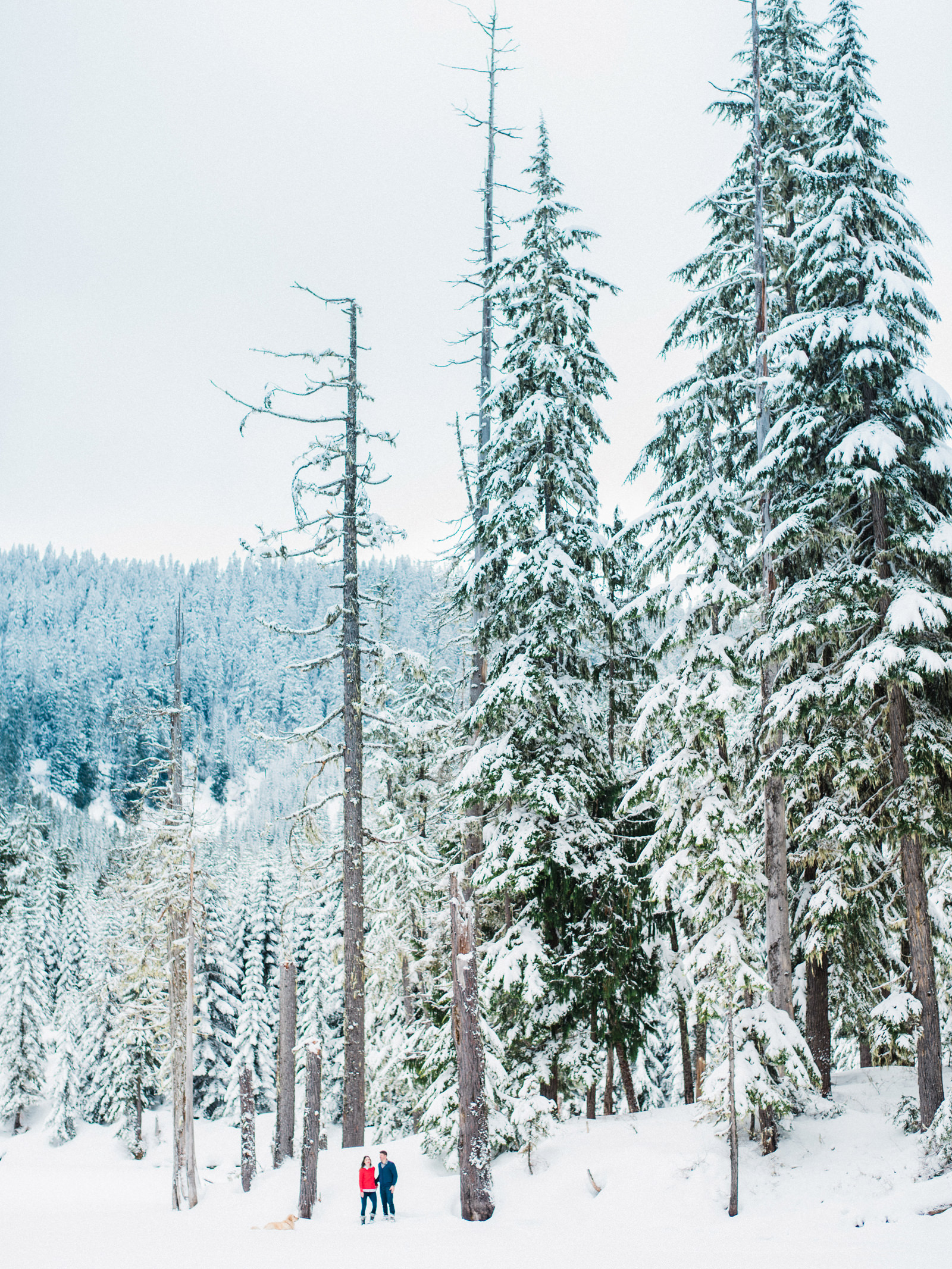 105-snowy-film-engagement-session-at-mount-rainier-by-fine-art-photographer-ryan-flynn.jpg