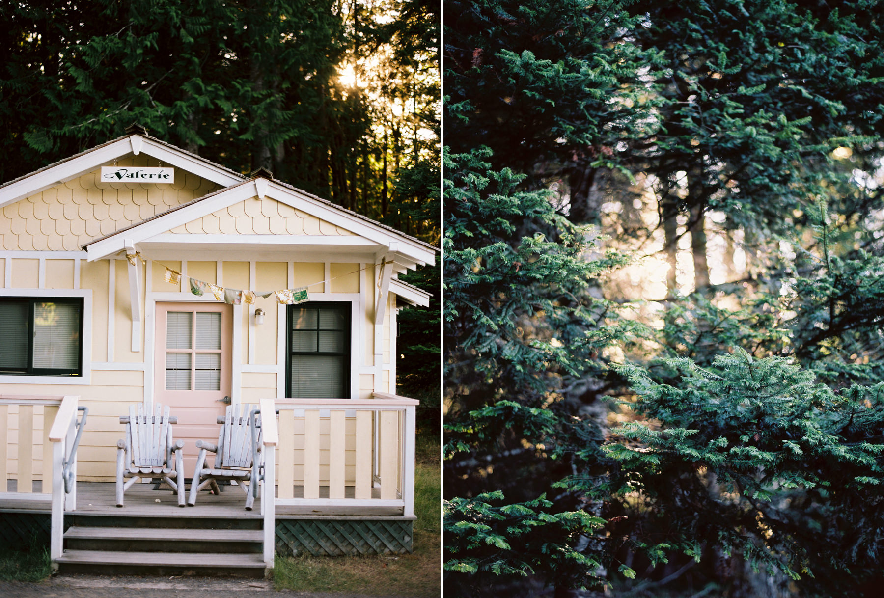 160-fine-art-film-wedding-portraits-at-nature-bride-near-the-lake-crescent-lodge.jpg