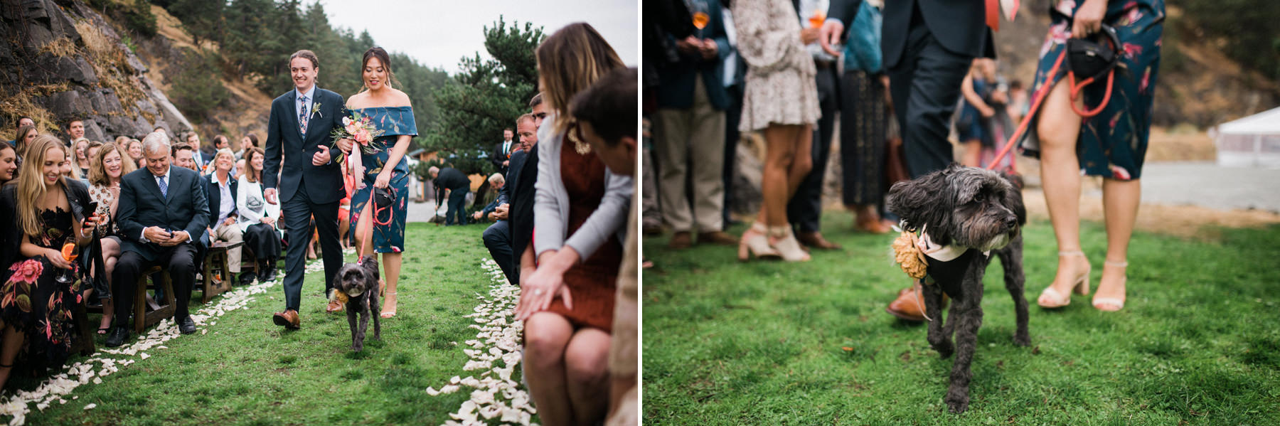 310-colorful-outdoor-lopez-island-wedding.jpg