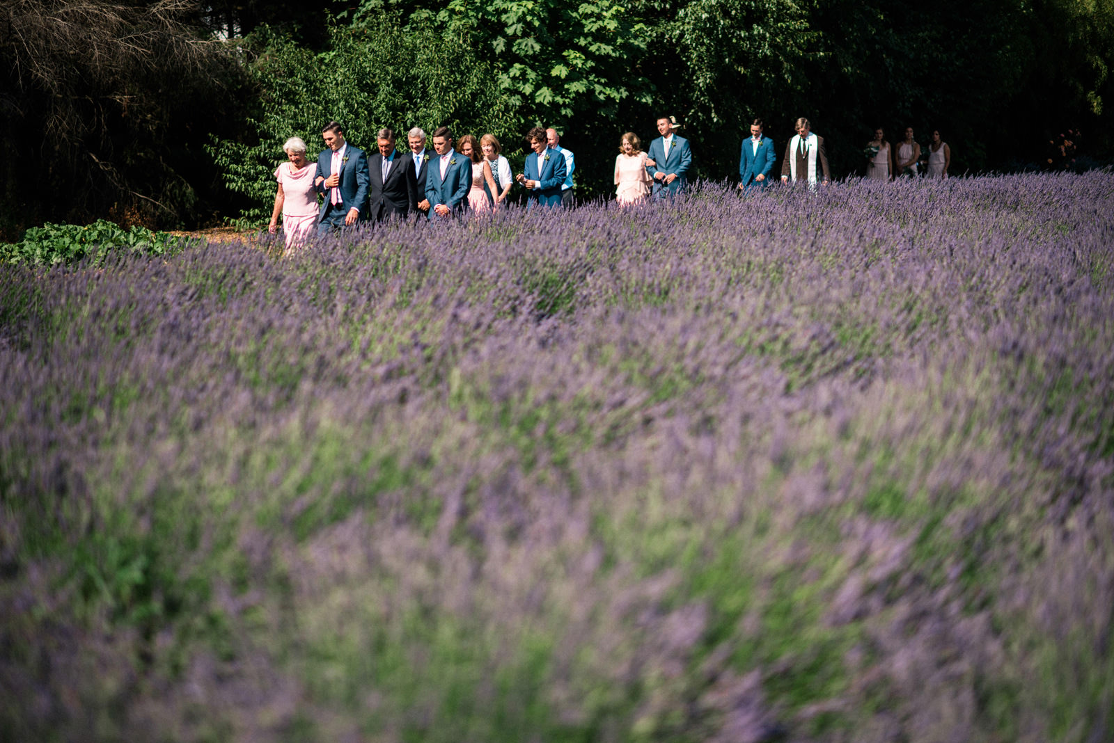 034-woodinville-lavendar-farm-wedding-with-golden-glowy-photos.jpg