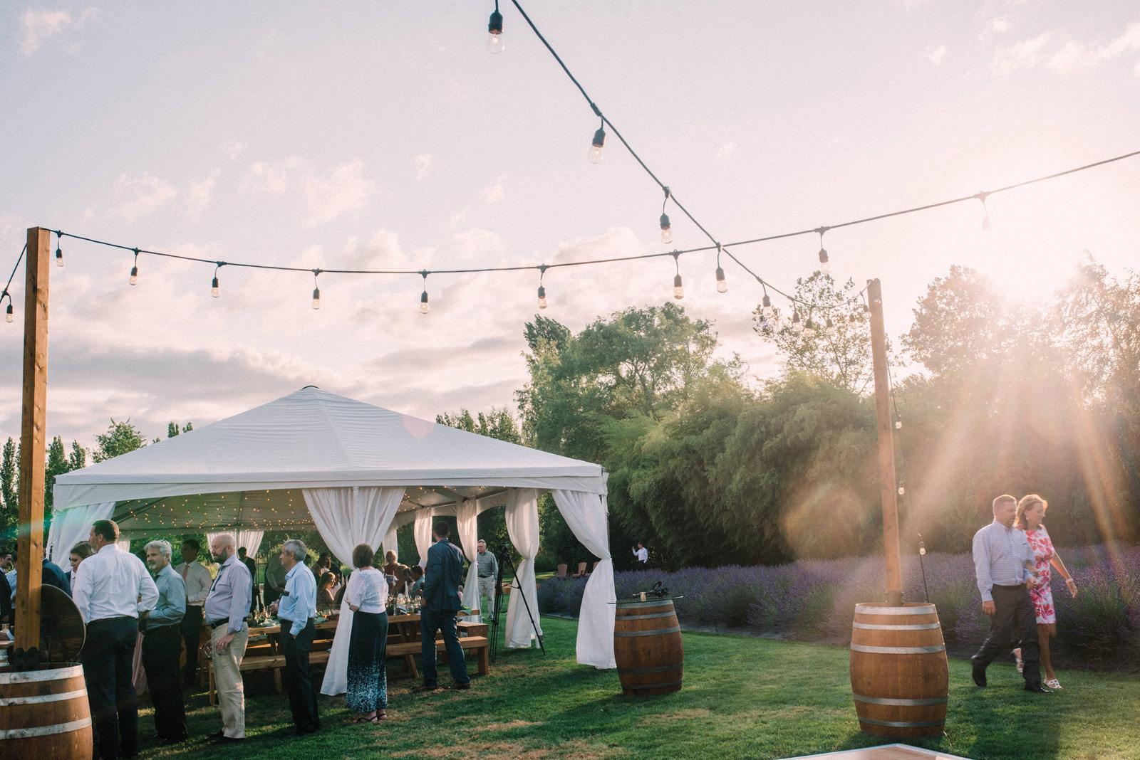 073-woodinville-lavendar-farm-wedding-with-golden-glowy-photos.jpg