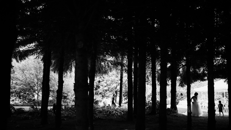 113-woodland-farm-meadow-wedding-by-best-seattle-film-photographer.jpg