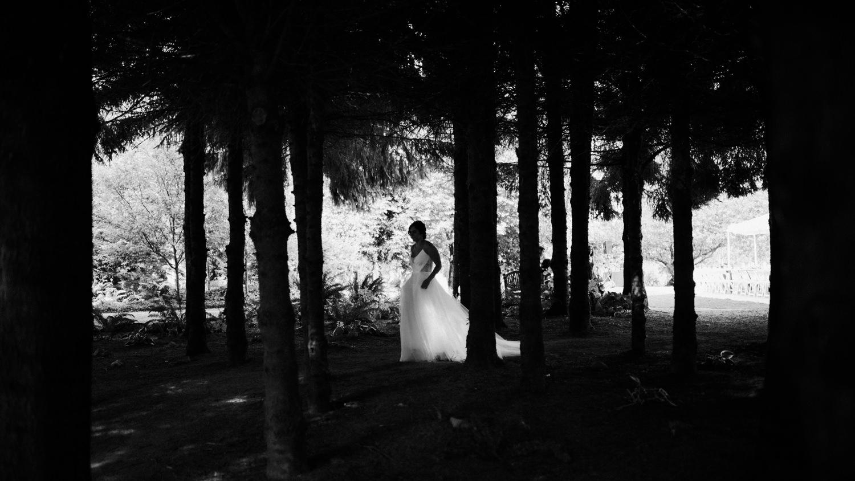114-woodland-farm-meadow-wedding-by-best-seattle-film-photographer.jpg