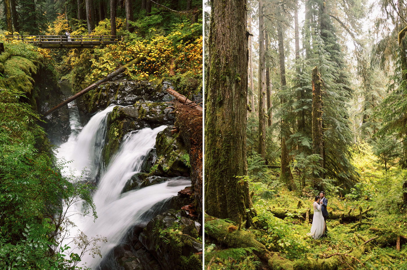 116-pacific-northwest-wedding-photography-by-ryan-flynn.jpg