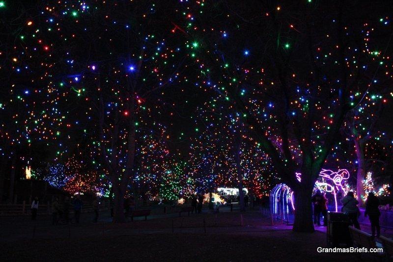 zoo+lights+5.jpg