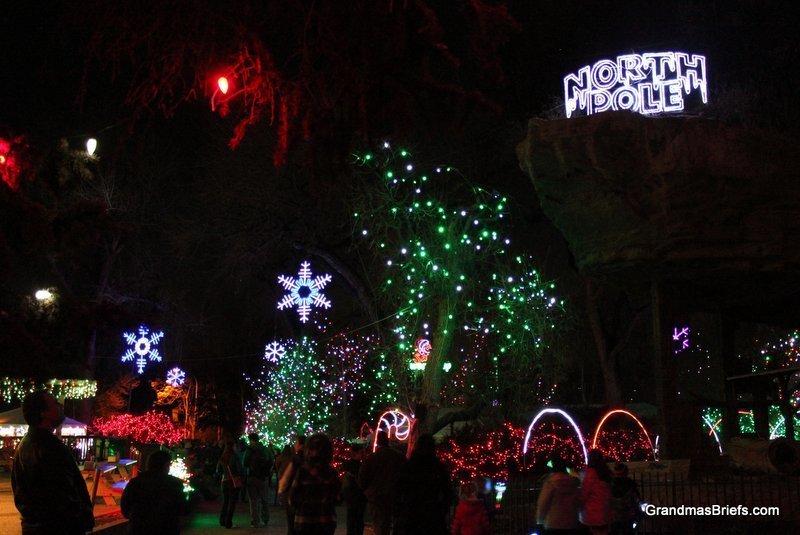 zoo+lights+7.jpg