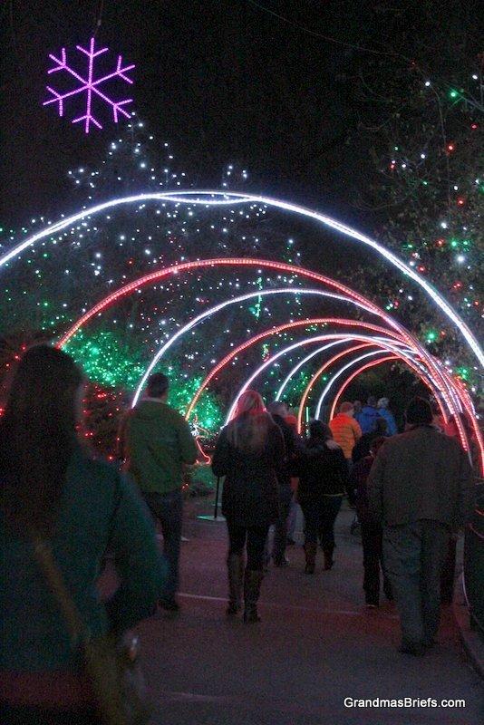 zoo+lights+9.jpg