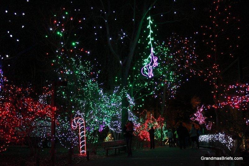 zoo+lights+12.jpg