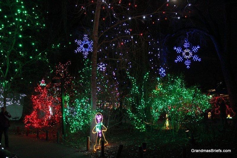 zoo+lights+13.jpg