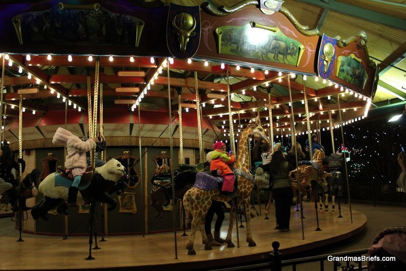 zoo+lights+15.jpg