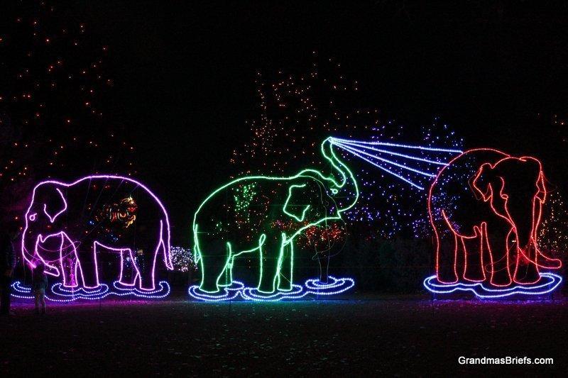 zoo+lights+16.jpg