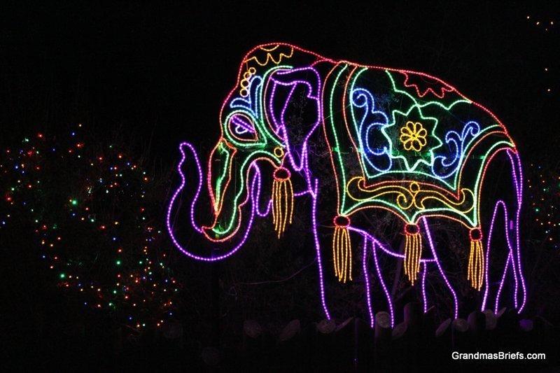zoo+lights+17.jpg