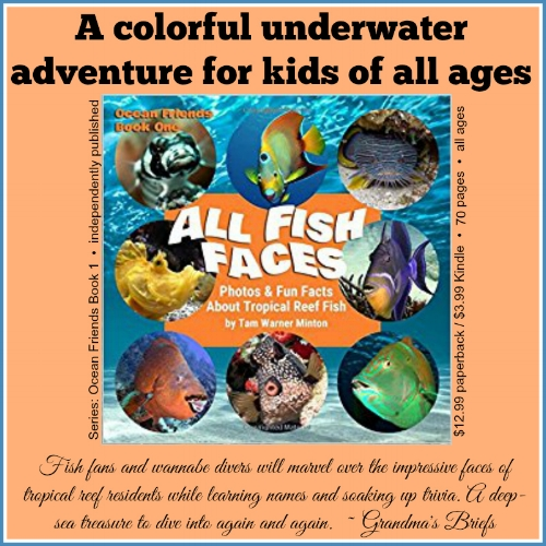 All Fish Faces brief review 2.jpg