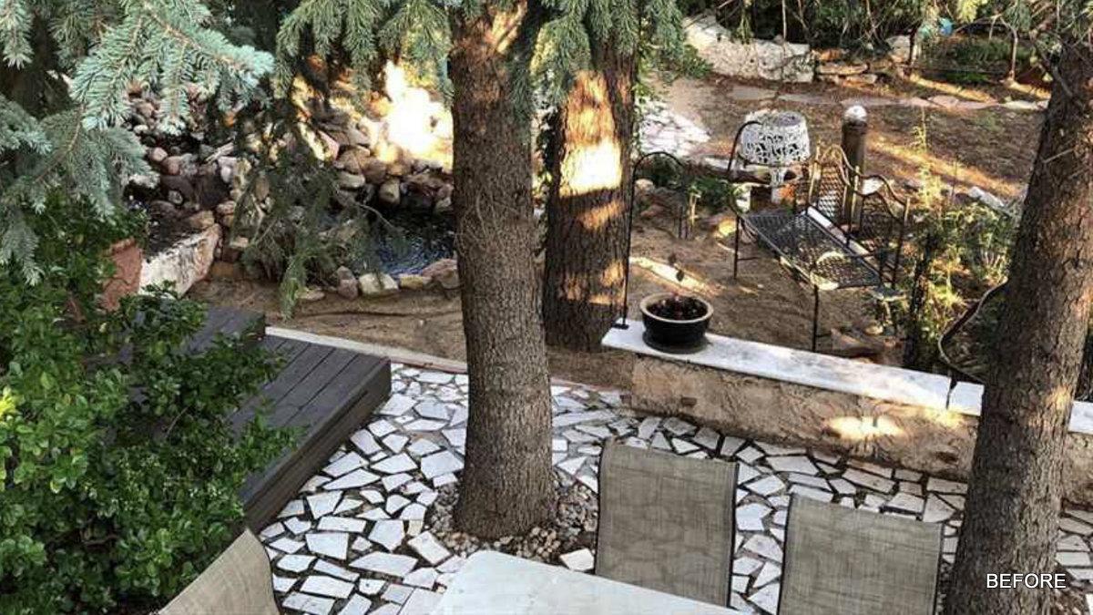backyard1 before.jpg