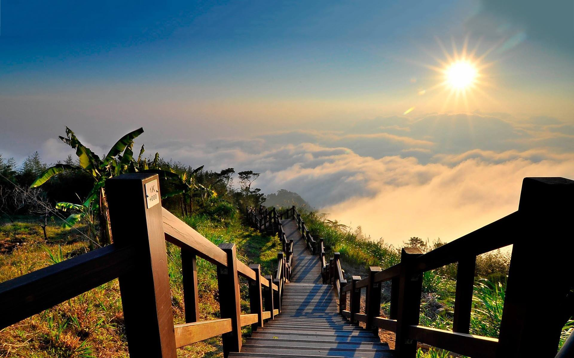 Stairs to Heaven, Yushan National Park, Taiwan // Source » awesomeplacestovisit.com