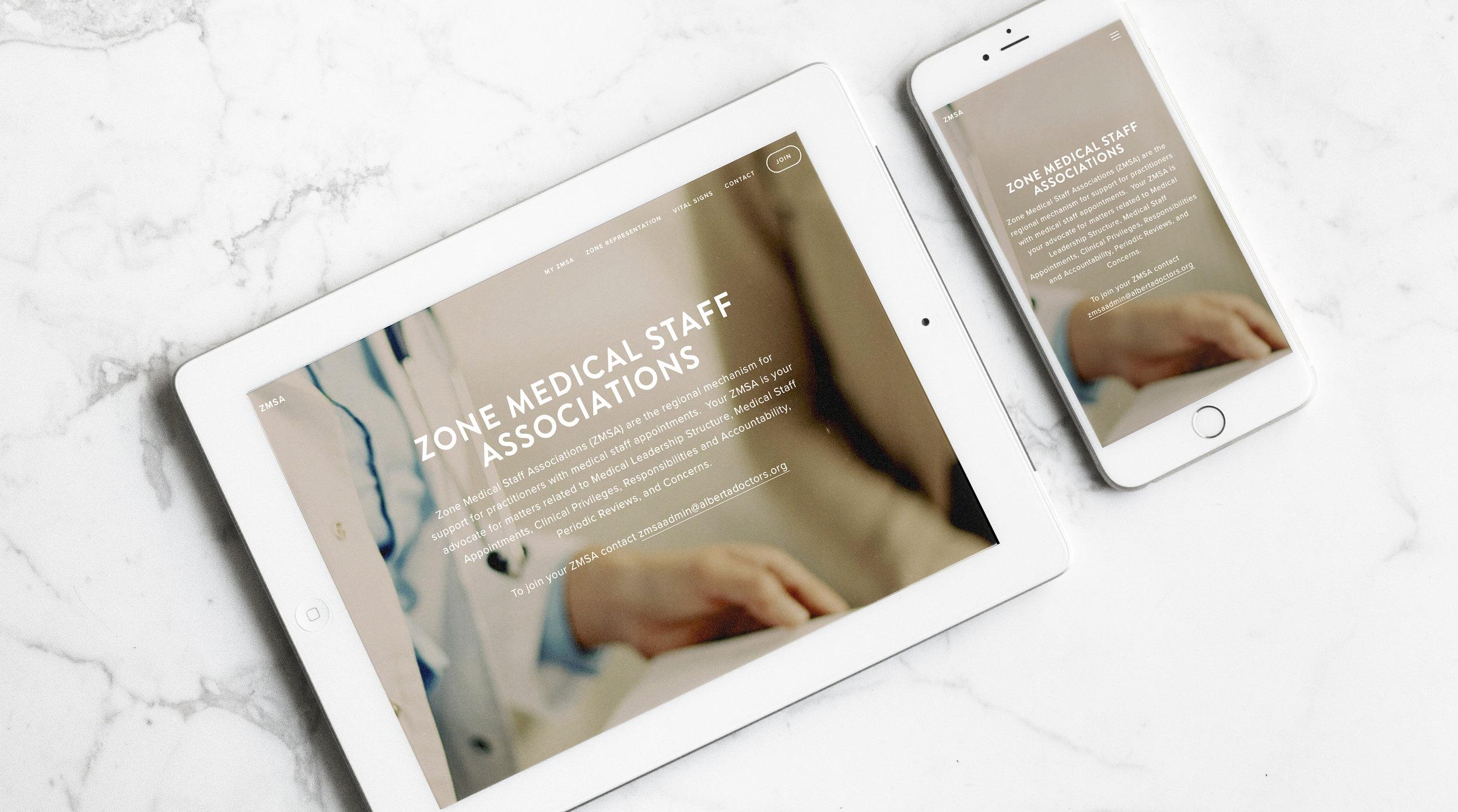 CAMSS website.jpg