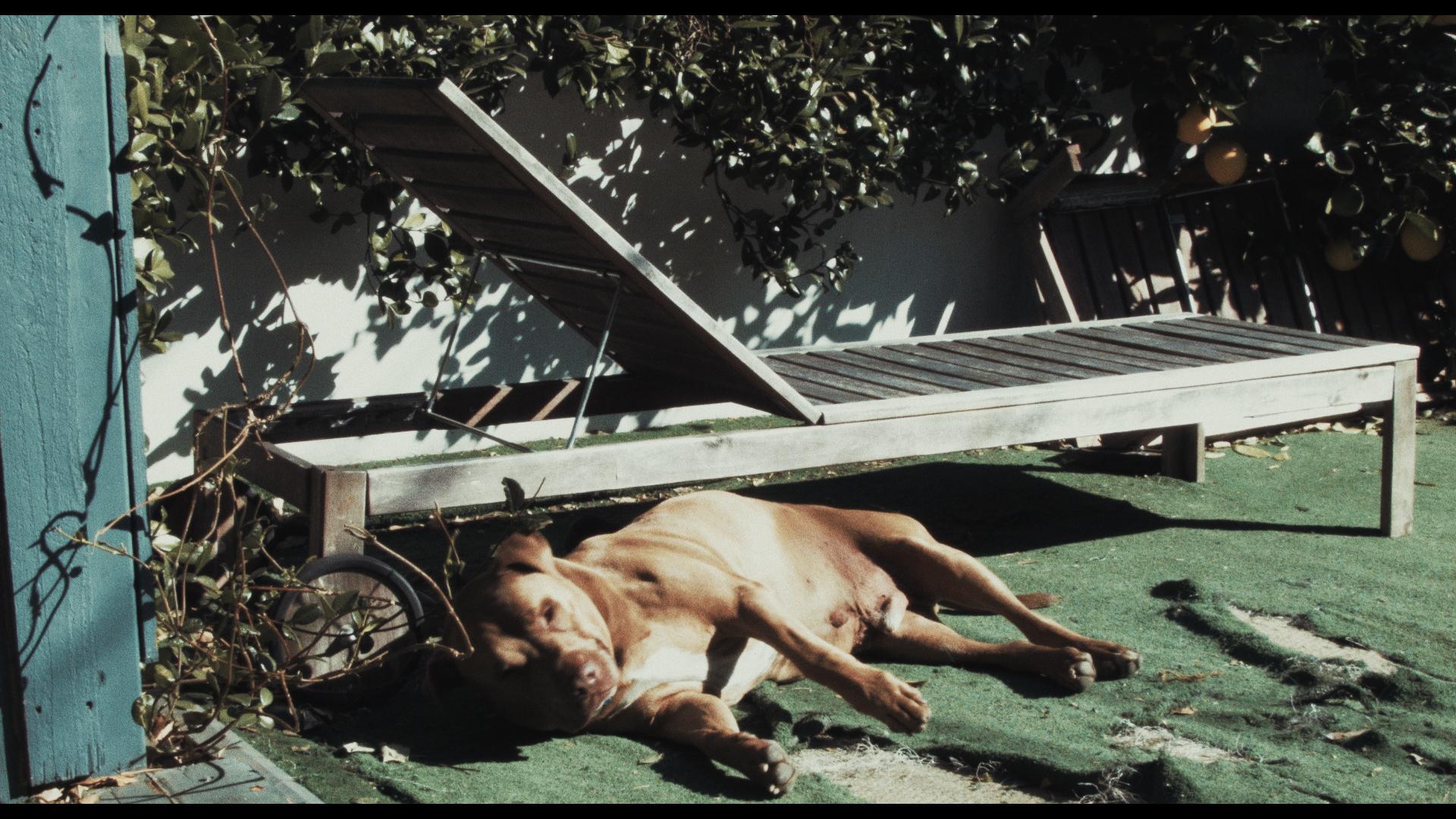 MAN feature film still - Roscoe