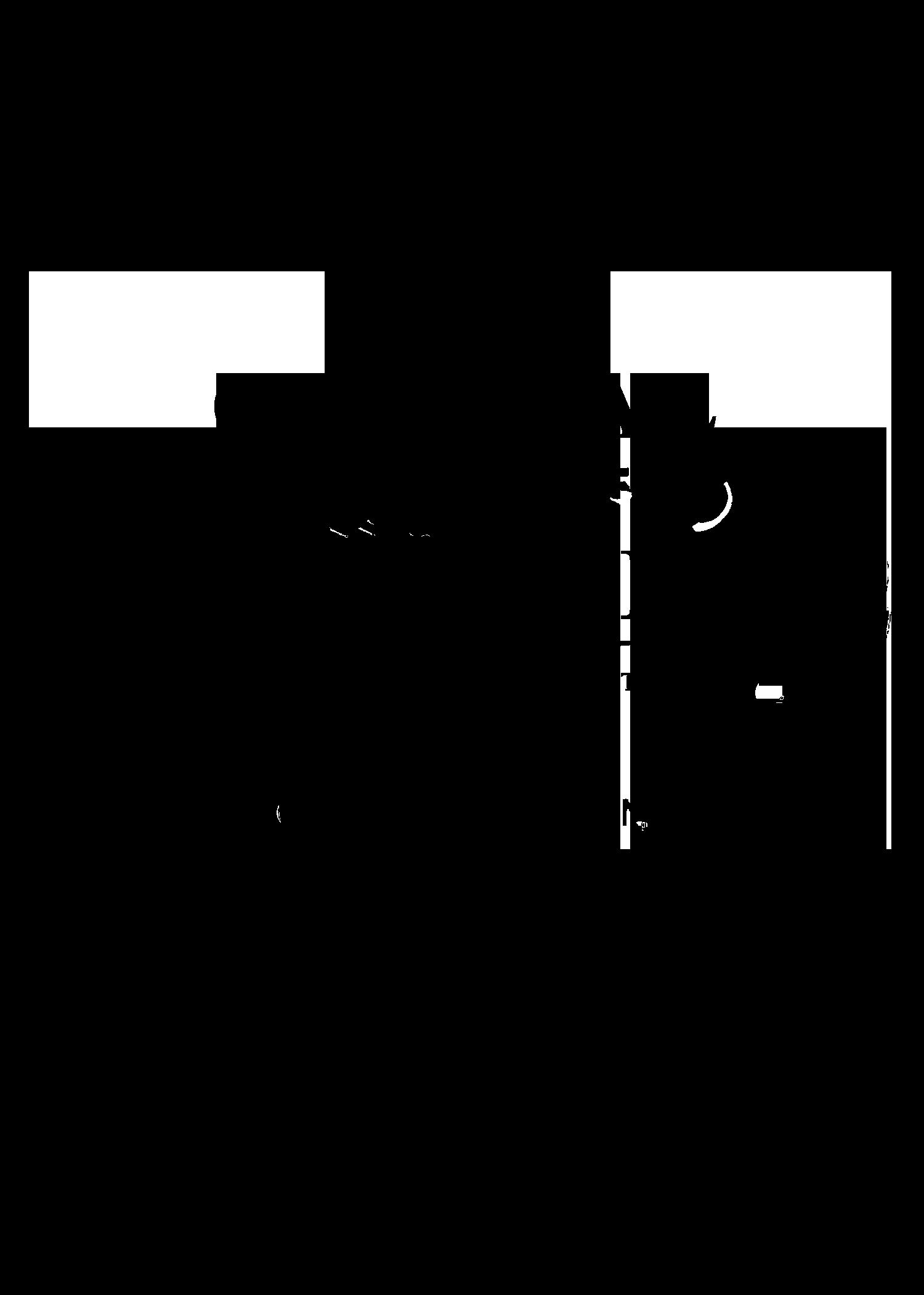 QPIFF Official Selection Crown Laurel (BLACK) .png