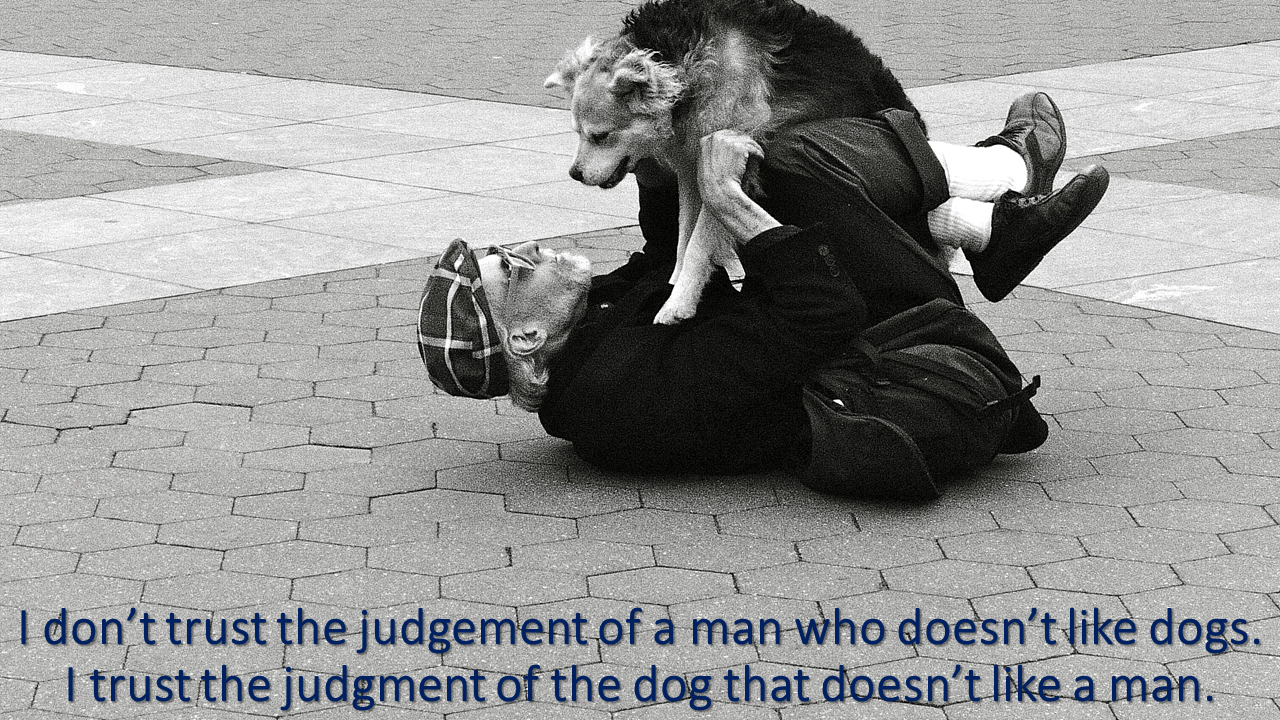 I don't trust the judgement of a man.png