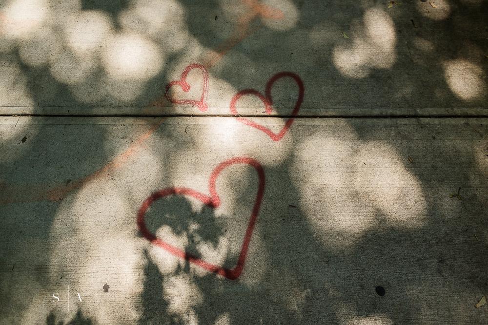 Day 22: Neighborhood Love