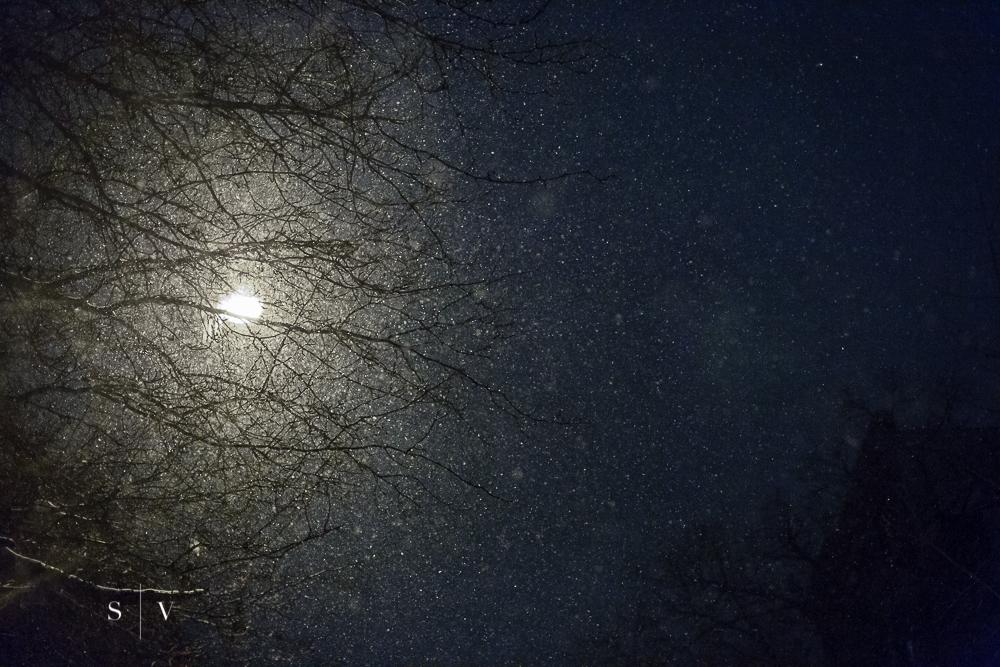 blizzard020.jpg
