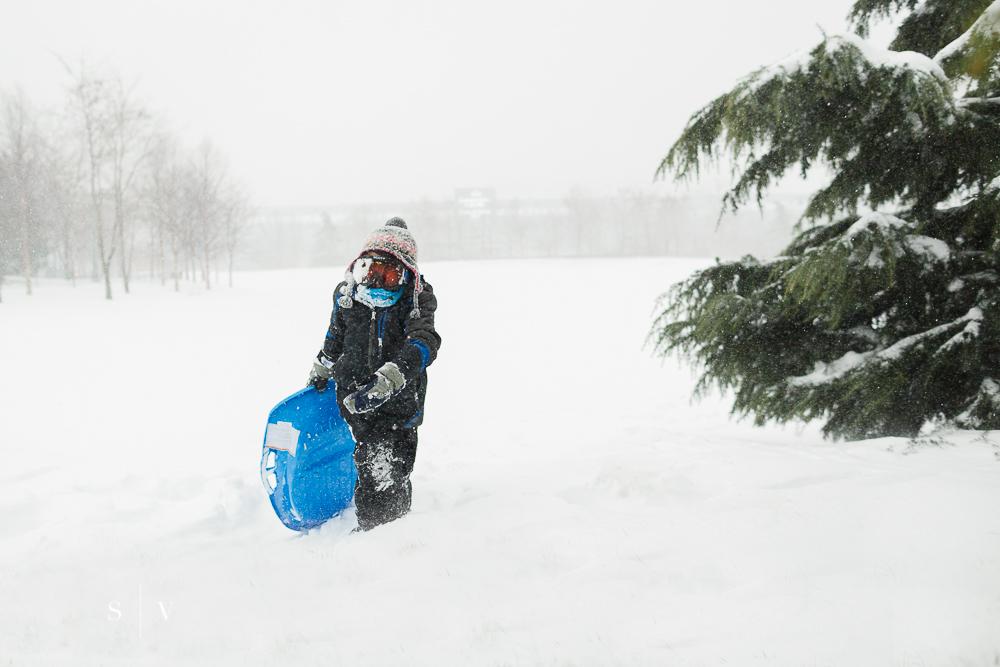 blizzard007.jpg