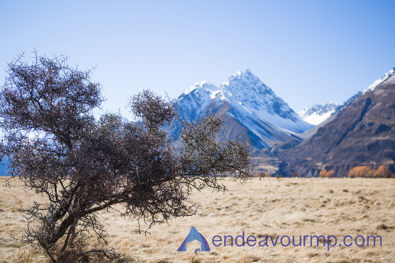 Mt-Cook-New-Zealand-Endeavour-photography_04.jpg
