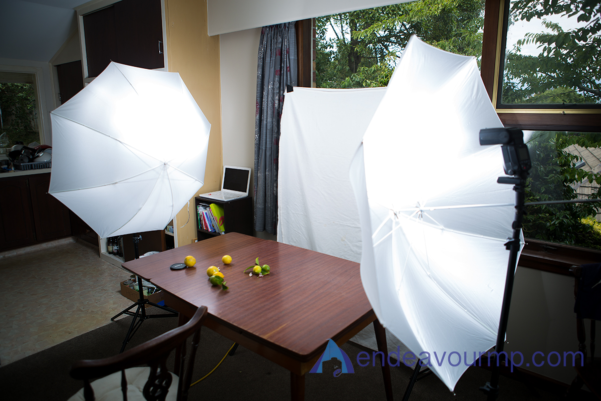 This is the set-up I used! Not highly technical, but the light was magical!
