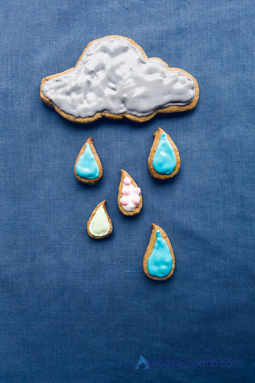 EMP_Cloud_Cookie06.jpg