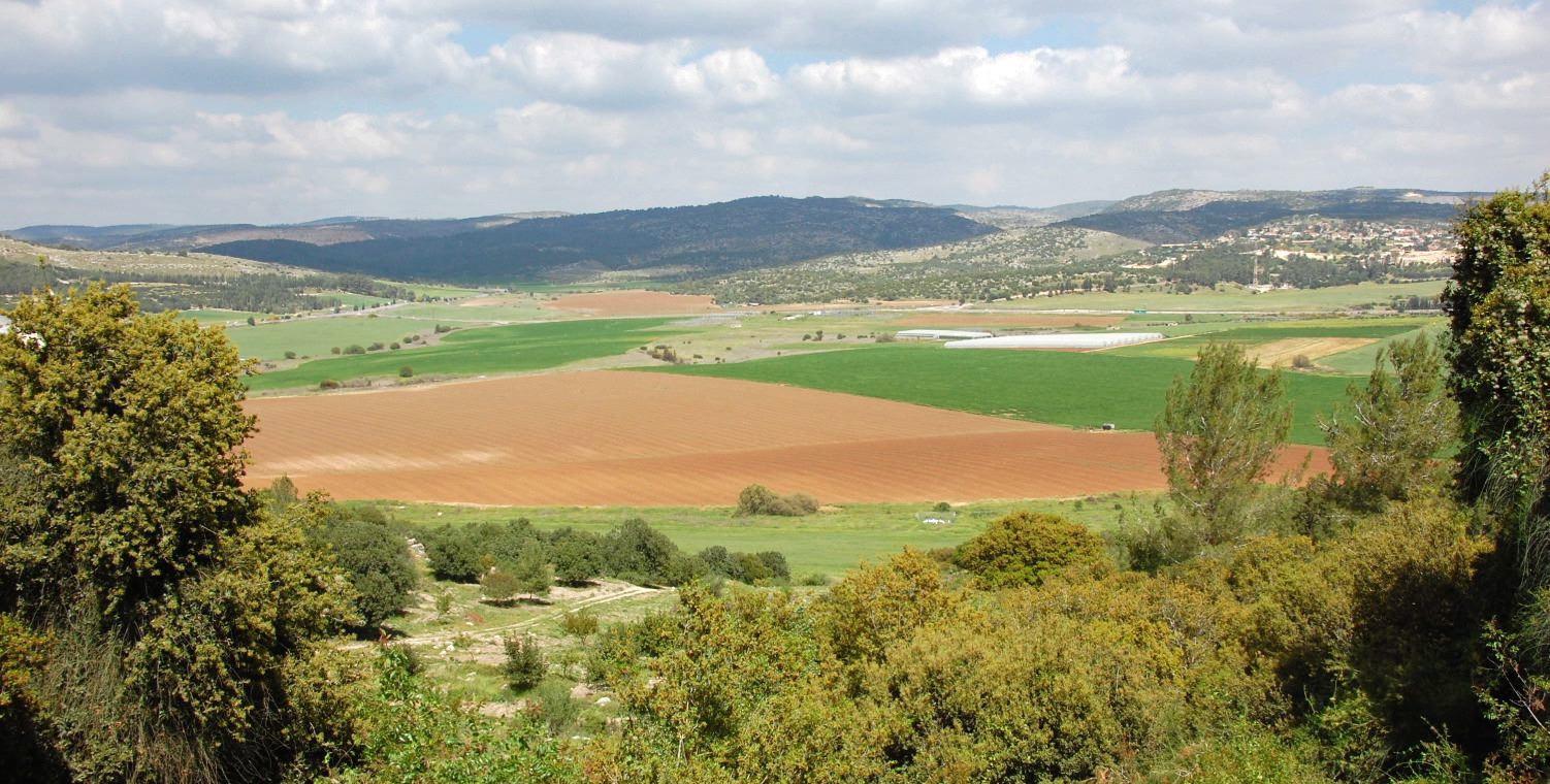 Valley of Elah (Photo credit: Accordance Bible Software, PhotoGuide.)