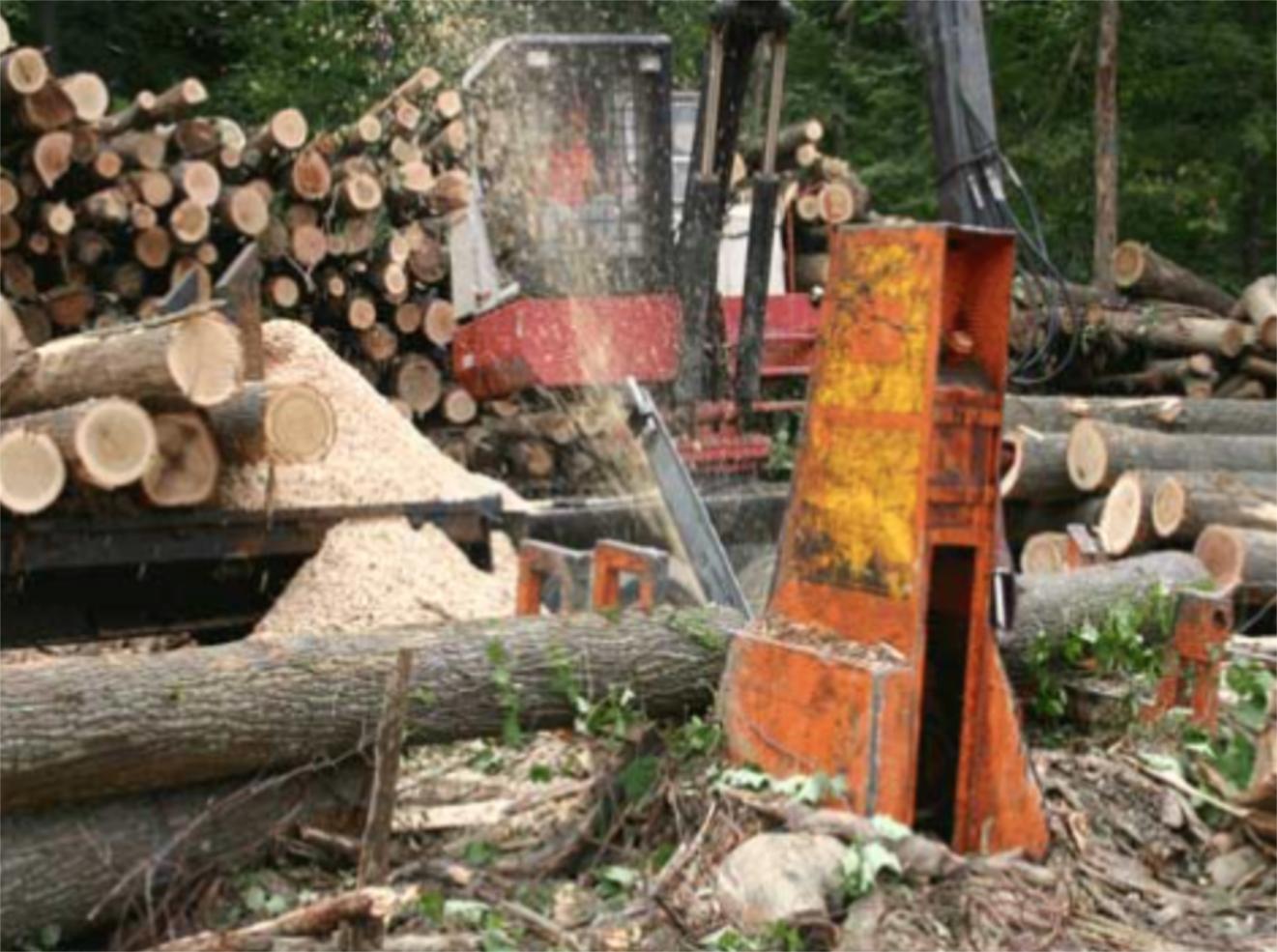 Tree Farm Mulching.jpg