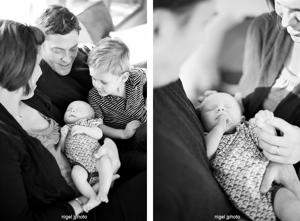 young-family-of-four-new-infant-baby-seattle-portrait.jpg