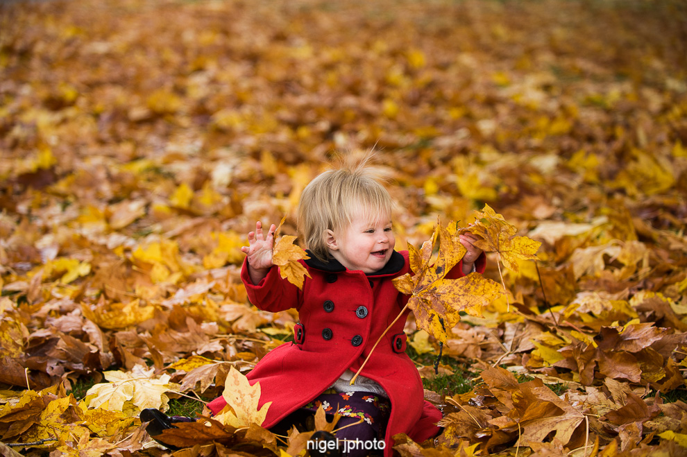 portrait-toddler-girl-playing-fall-leaves-seattle.jpg